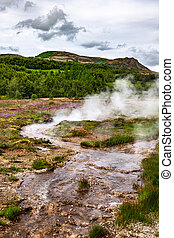 Haukadalur geothermal area along the golden circle, Iceland...