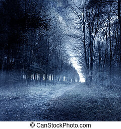 A ghostly haunted forest background.