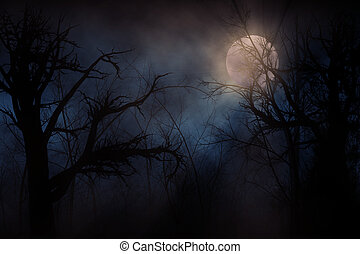 Haunted Forest - Illustration of night forest alight with...