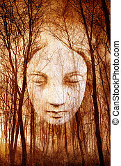 Haunted Forest - Ghostly female face appearing in misty...
