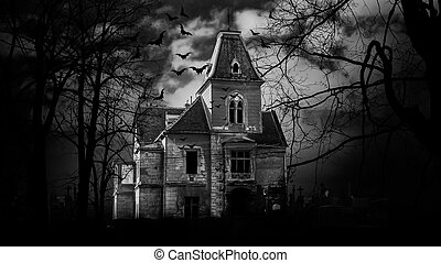 Haunted house Black and White Photography