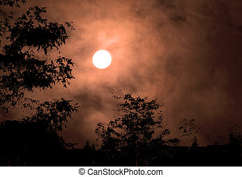 Haunted Sky - Full moon in orange clouds with silhouette of ...