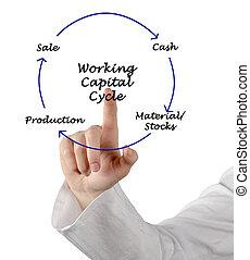 Hauptstadt, arbeitende, Zyklus