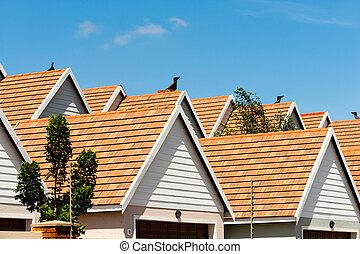 haus, condomimium, rooftops.