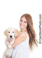 haustier, goldener apportierhund, junger hund, hund