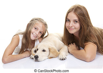 haustier, kinder, hund, familie