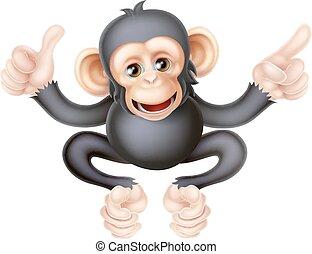 haut, chimpanzé, singe, pointage, pouces