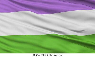 haut, drapeau ondulant, fin, fierté, genderqueer