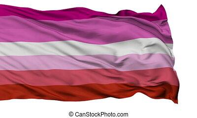 haut, drapeau ondulant, fin, fierté, lesbienne