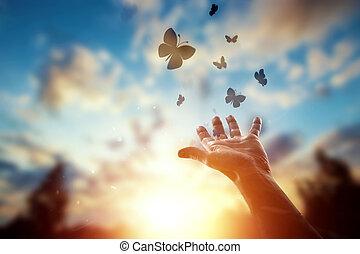 haut, espoir, fin, mains, coucher soleil, mouches, troupeau, fond, apprécier, beau, symbole, papillons, nature., concept, religion, espoir, foi, freedom.
