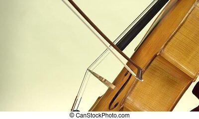 haut., fond, violoncelle, fin, blanc, jouer