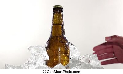 haut., froid, lent, prend, bouteille, mouvement, fond, beer., fin, blanc, type