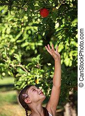 haut, girl, pomme, atteindre