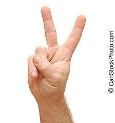 haut, isolé, white., deux doigts, main