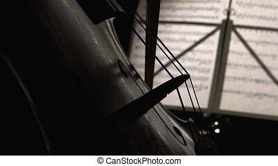 haut, jouer, cello., fin, vue côté