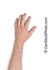 haut, main, isolé, homme, fond, fin, blanc, vue