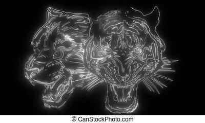 haut, tigre, animation, panthère, lumières