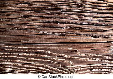 haute resolution, naturel, affligé, bois