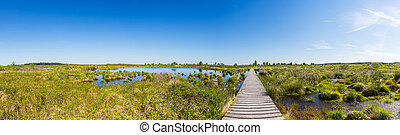 Hautes Fagnes with a boardwalk over a bog pond panorama