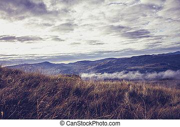 hautes montagnes, brume, nuages, haut