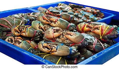 hav, krabba, marknaden