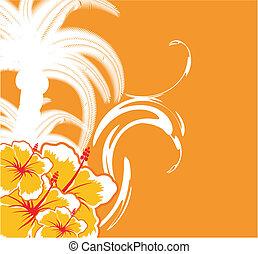 havaiano, background1