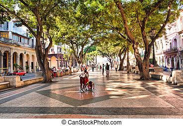 HAVANA, CUBA-MAY 14: The boulevard of El Prado in Old Havana...