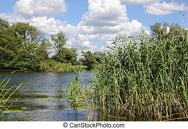Havel river at summer time (Brandenburg, Germany).