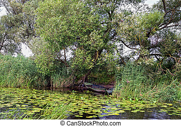 Havel river (Brandenburg, Germany). boats on shore
