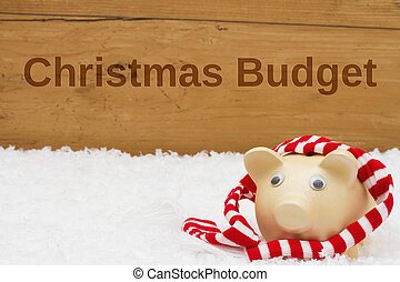 Having a Christmas Budget, Piggy bank with scarf on snow