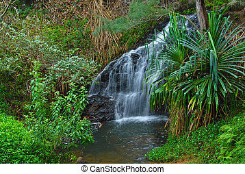 hawai, waterall, maui