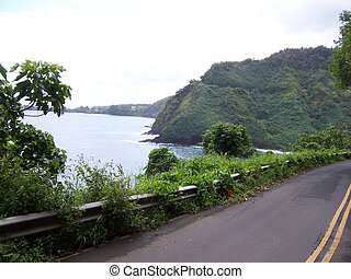 Hawaian Roads - 3