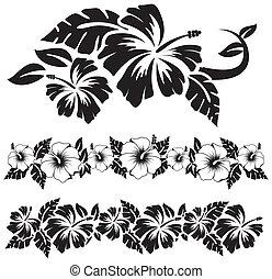 hawaiano, hibisco, flores