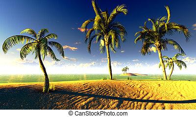 hawaien, paradis