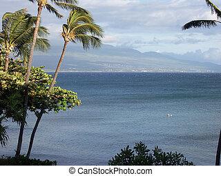 hawaii, -, 20