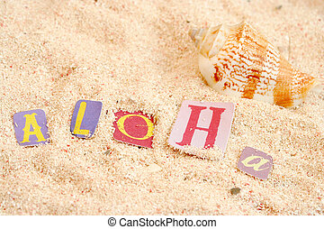 hawaii beach - hawaiian hello on sandy tropical beach with...