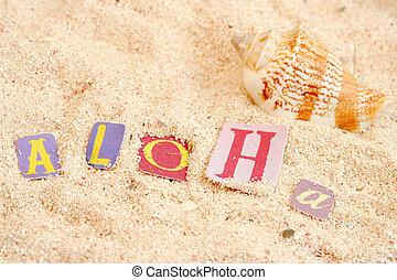 hawaii beach - hawaiian hello on sandy tropical beach with...