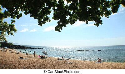 Hawaii Beach - Three Tables Beach at Pupukea Beach Park,...