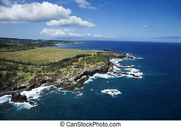 Hawaii coastline.