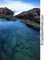 hawaii., de marea, maui, piscina