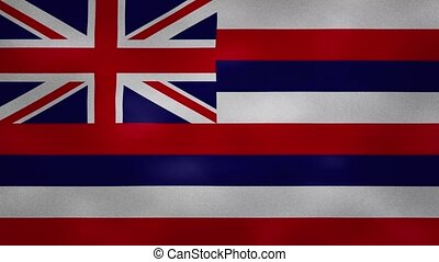 Hawaii US dense flag fabric wavers, perfect loop for background