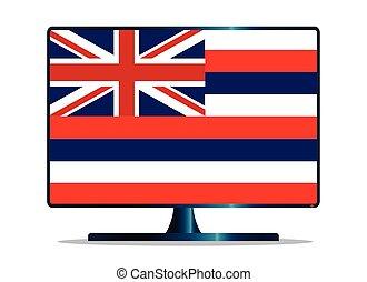 Hawaii Flag TV