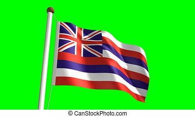 Hawaii flag video (seamless & green screen)