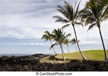 Hawaii Pacific Coast of Kona Island