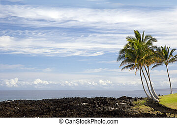 Hawaii Pacific Coast of Kona Island