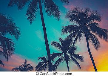 hawaii, palmbomen, op, ondergaande zon