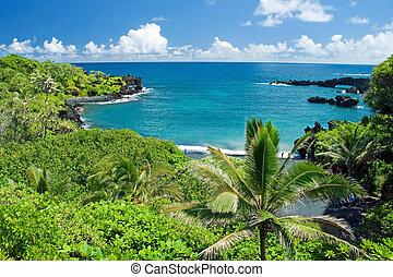 hawaii, paradis, på, maui, ö