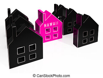 Hawaii Property Icon Shows Real Estate From American Island Paradise - 3d Illustration