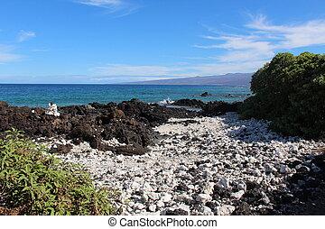 Hawaii Shore Landscape
