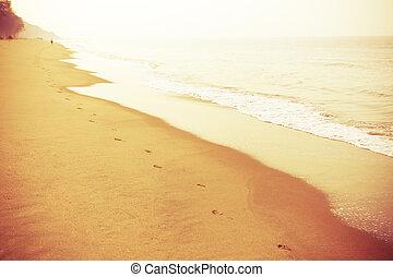 hawaii - Tropical beach on a beautiful island in sunset...
